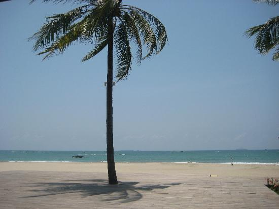 Bay of Bengal Resort: view from restaurant