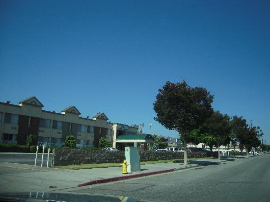 Hotel Pacific Garden: 裏通りからホテル入口を臨む。