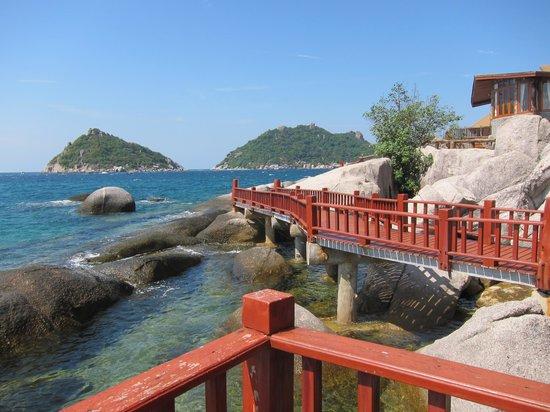 Dusit Buncha Resort : The view