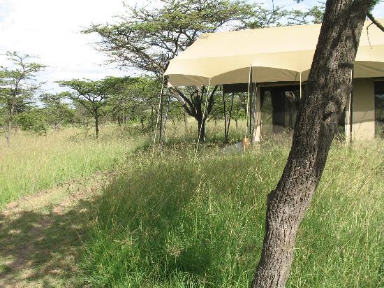 Naboisho Camp, Asilia Africa: Zelt mit Umgebung