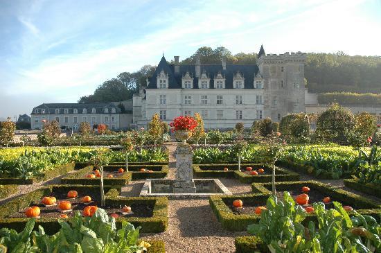 Le Potager de Villandry et son château Renaissance