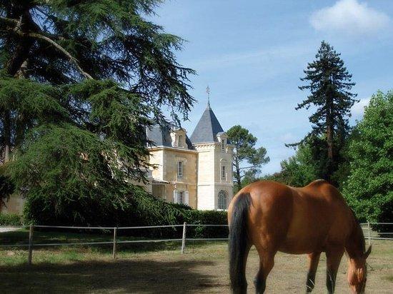 Chambres d'hotes du Chateau de Leognan