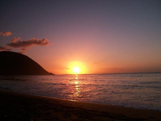 Fleurs des Iles : coucher de soleil de grande anse