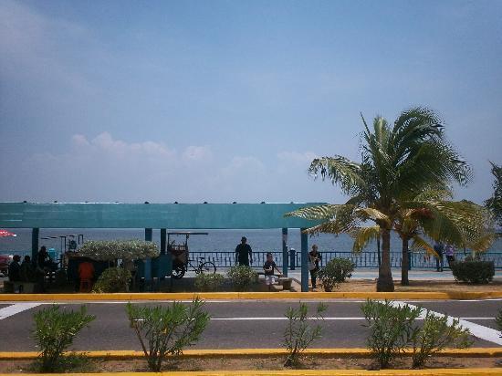 La vereda del lago Maracaibo: PAISAJE ENCANTADOR
