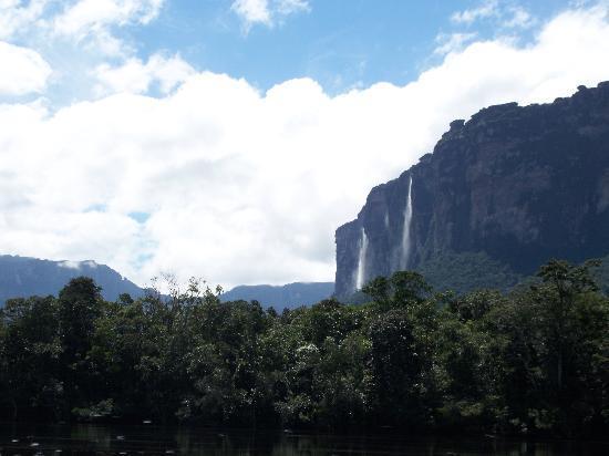 Jungle Rudy's Ucaima Camp: Vistas interminables