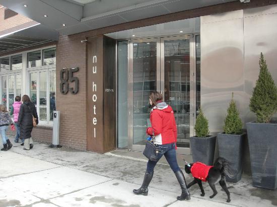 누 호텔 브루클린 사진