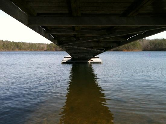 Lewis-Smith Lake & Dam : under the boat ramp