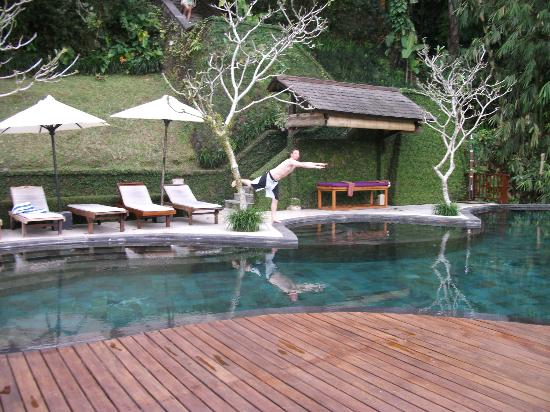 Nandini Jungle Resort & Spa Ubud: The pool