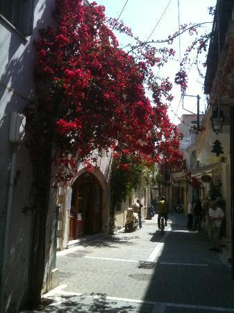 Paligremnos Apartments: Hier kann man auch hinfahren: Rethymnon