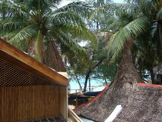 Victory Beach Resort: Blick vom Balkon.