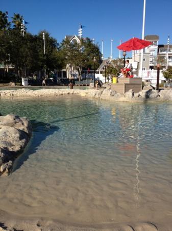 Disney's Beach Club Villas: sand bottom pool