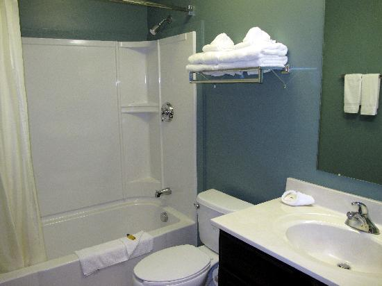 Suburban Extended Stay Hotel Camp Lejeune: Bathroom Area