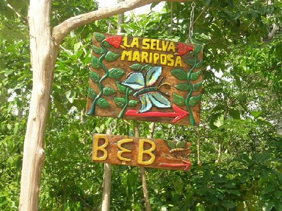 La Selva Mariposa