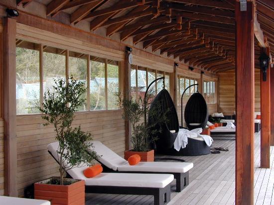 Termas Puyehue Wellness & Spa Resort : Vista desde una habitación