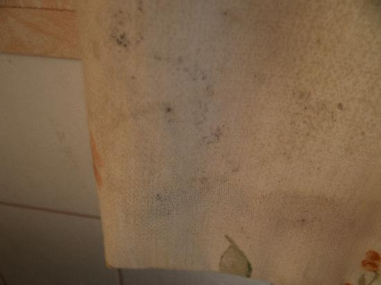 Hunstanton, UK: Mould on the curtains