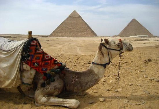 Egypt Guidelines Day Tours