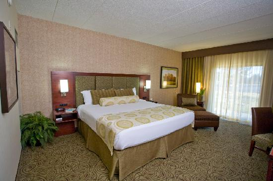 Ho-Chunk Casino Hotel and Convention Center: Luxury Suite