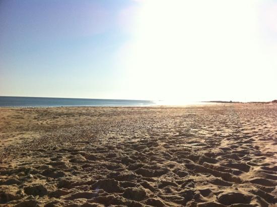 Golden Club Cabanas: the beach