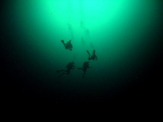 Dream Diving: Angelita