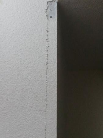 Microtel Inn & Suites by Wyndham Ft. Worth North/At Fossil Creek: Walls 1 example. Many more areas like this.