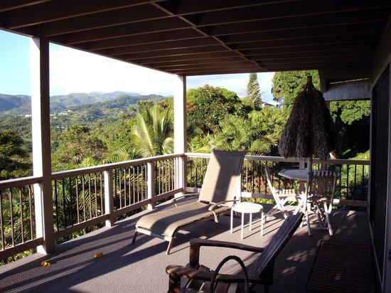 Marjorie's Kauai Inn : Our lanai