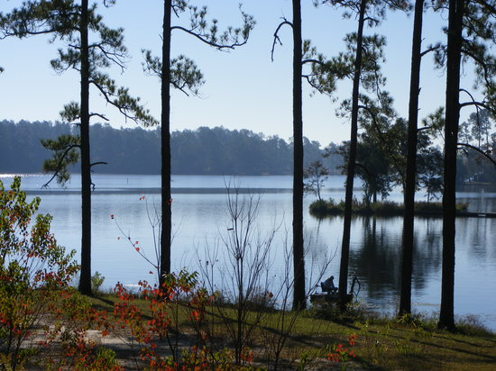 Hattiesburg, MS: View of the Lake from the Campground