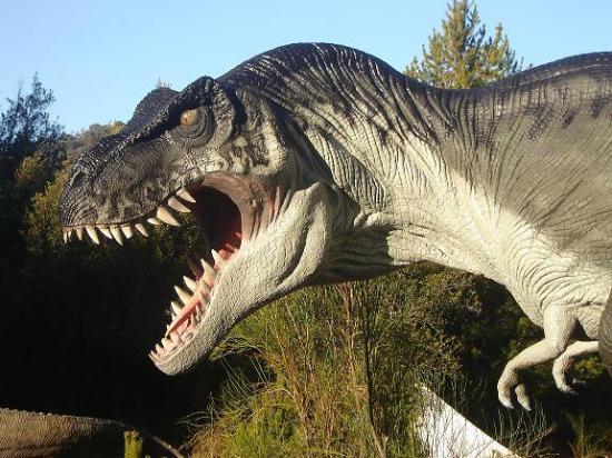 Parque Nahuelito: Rex de 14 mts. de largo por 5 de alto (aprox.)