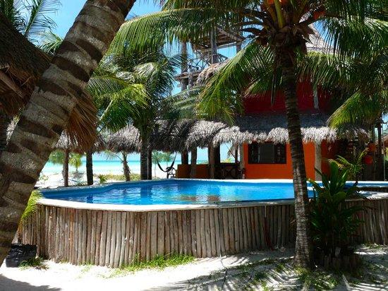 Hotel Casa Palapas del Sol: Palapas del Sol features a pool overlooking beach and ocean