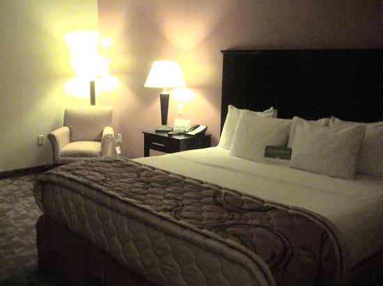 La Quinta Inn & Suites Tulsa Airport / Expo Square : oh so comfy bed