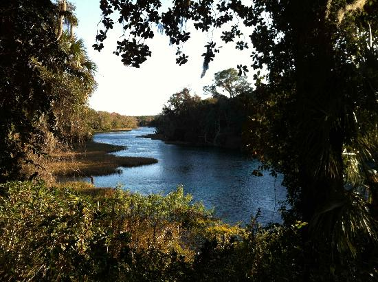 Nature Coast Inn: nearby Rainbow River