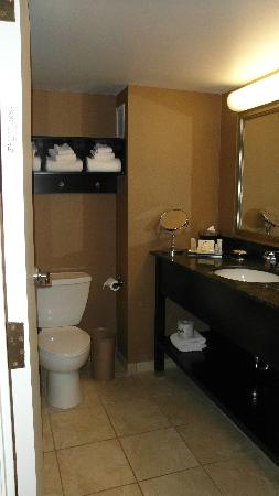 Crowne Plaza Columbus Downtown: Nice bathroom but shower too short for tall people.
