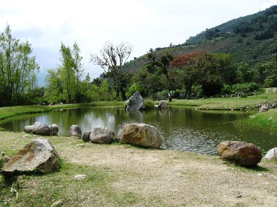 Laguna artificial fotograf a de jardin botanico de merida for Lagunas de jardin