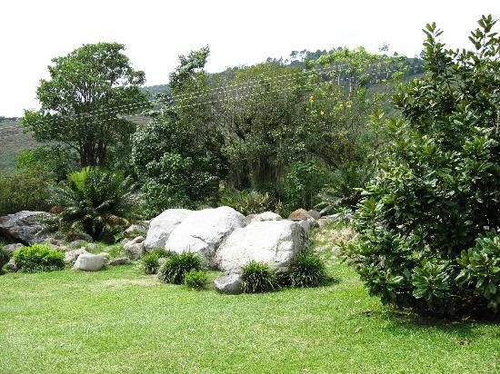 Reas verdes picture of jardin botanico de merida for Jardines verdes