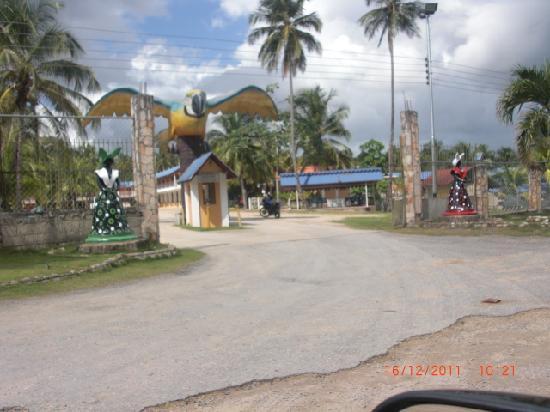 La Tierra del Coco Kokoland: entrada