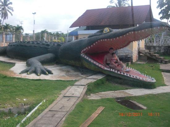 Cariaco, Venezuela: el cocodrilo