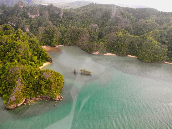 Helioutpost: mangrove view from the air