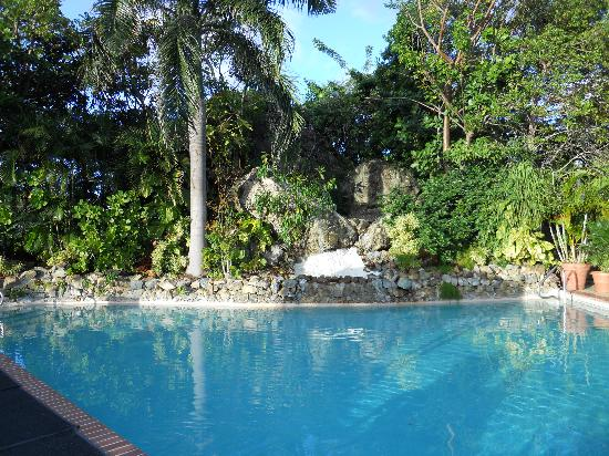 Flamboyan on the Bay Resort & Villas: Pool viewed from the bar.