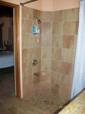 The SPA Retreat Boutique Hotel: The shower