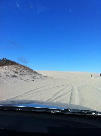 Sunnybank Luxury Estate: dune