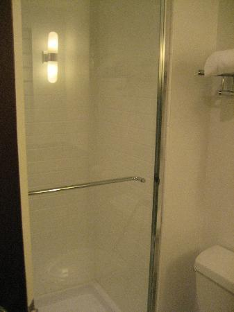 Four Points by Sheraton & Conference Centre Gatineau-Ottawa: Shower
