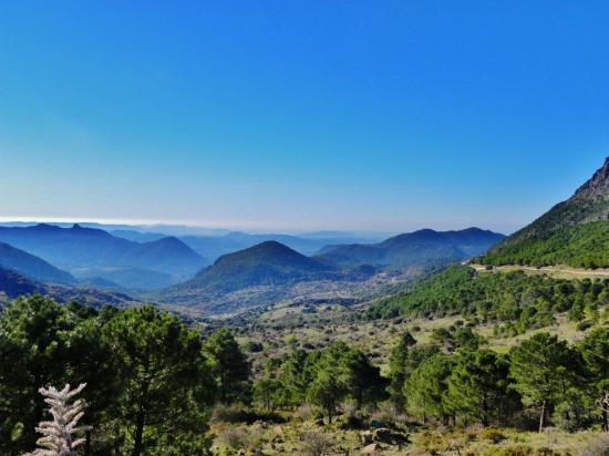 Cortijo Huerta Dorotea: Sierra de Grazalema
