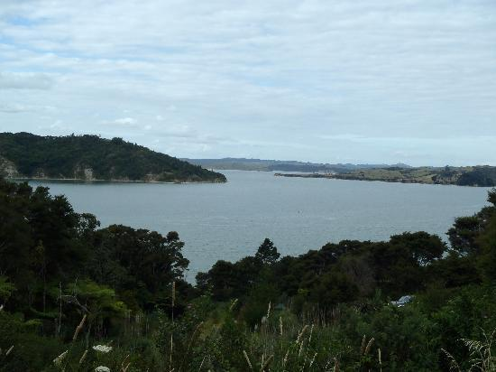 Waters Edge Holiday Accommodation: View from top of drive