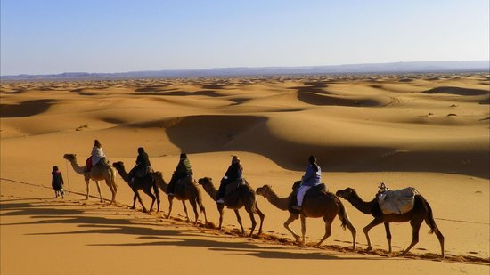 Morocco Experience Tours