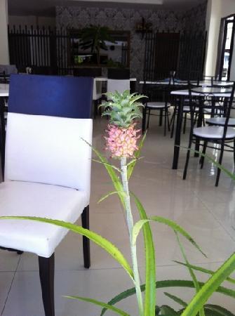 Nirvana Inn: ananas