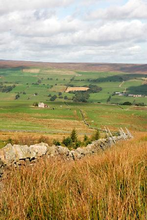 Coves House and Weardale Outdoor Centre: Estate