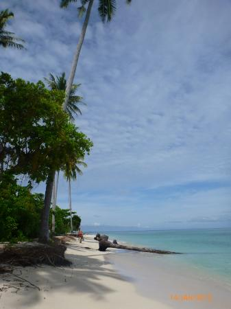 Reza and Dira Homestay: Beach on Derawan