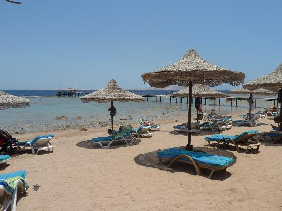 Tamra Beach: spiaggia / beach