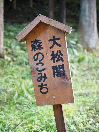 Taishoukaku: 近くにある散策コース