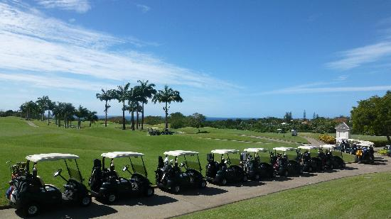 Royal Westmoreland: Golf buggies all lined up for the second day of our Pro-Am tournament