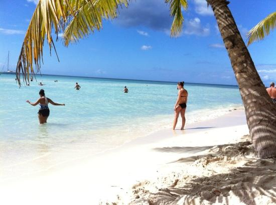 Sirenis Punta Cana Resort Casino & Aquagames : saona